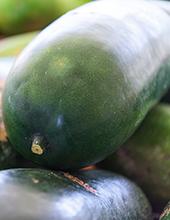 カット野菜冬瓜